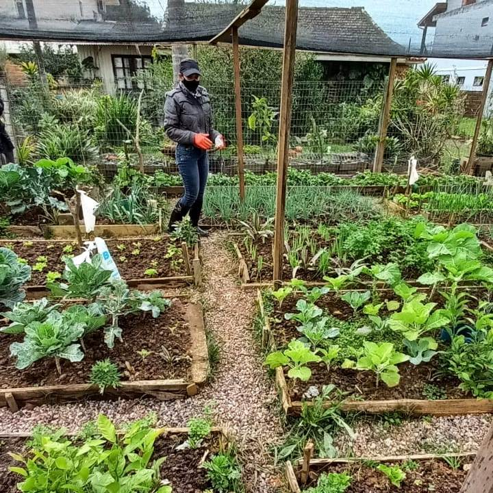 Uma Horta Orgânica adubada com superação! 3