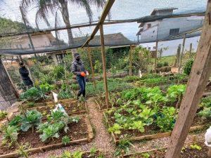 Uma Horta Orgânica adubada com superação! 1