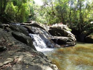 Cachoeira da Gurita