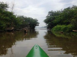 Remando o Caiaque do Sr. Osni, próximo à foz do rio com a lagoa.