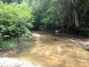 Rio Ribeirão Grande