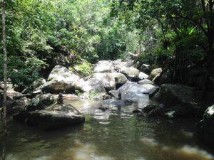 Rio Ribeirão Grande (5)