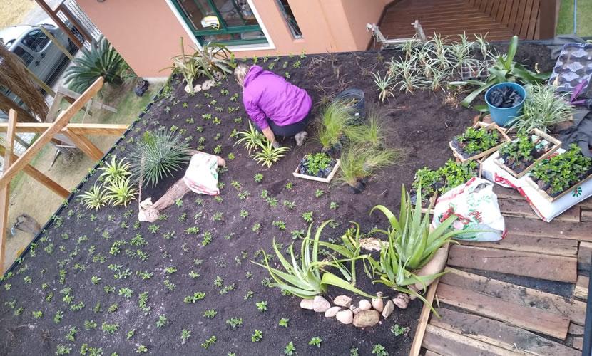 Eco Mutare - telhado verde