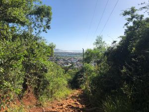 Trilha do Morro do Lampião, no Campeche 5