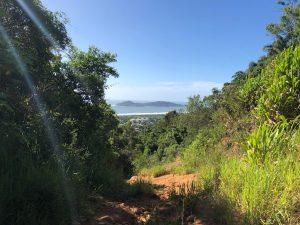 Trilha do Morro do Lampião, no Campeche 12