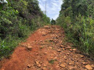 Trilha do Morro do Lampião, no Campeche 13