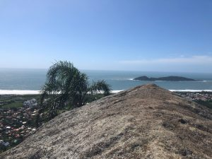 Trilha do Morro do Lampião, no Campeche 26