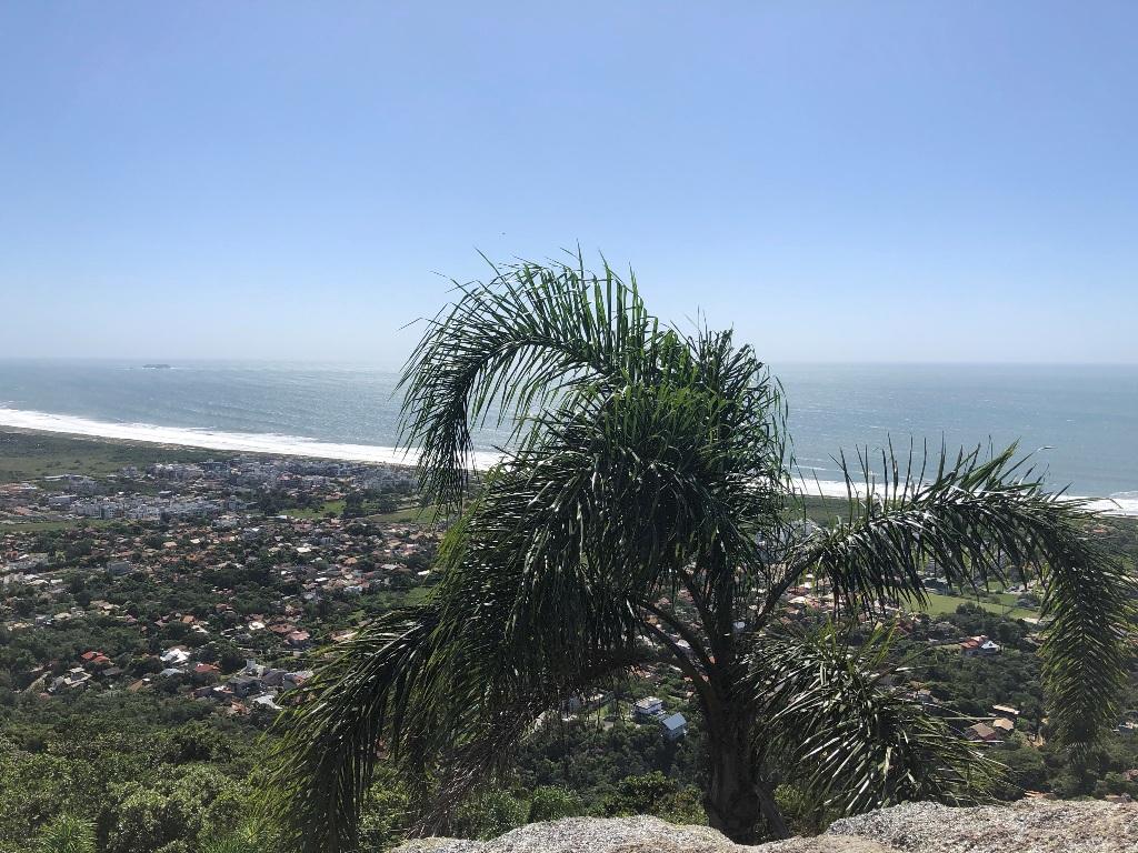 Vista para o leste: Novo Campeche