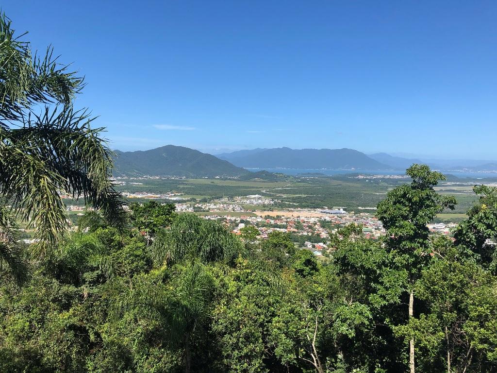 Vista para sudoeste: Campeche Central, Ribeirão