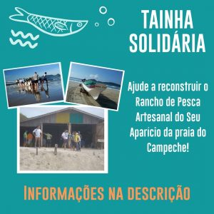 Tainha Solidária - Campanha pela Reconstrução do Rancho do seu Aparício 1