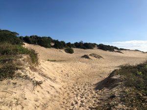 Área de restinga e dunas