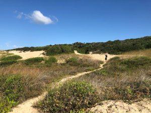 Área de restinga e dunas do Rio Tavares