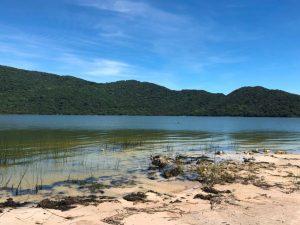 Cianobactéria na Lagoa do Peri pode contaminar ostras e mexilhões